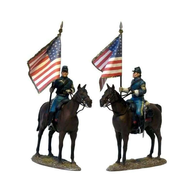 W 042 US cavalry National color