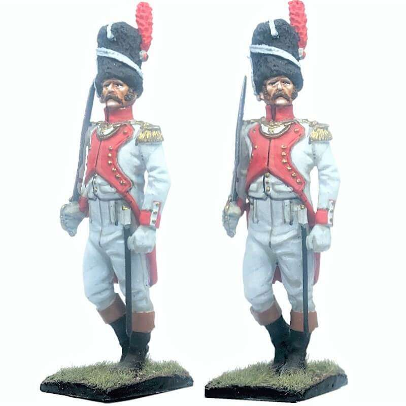 French imperal guard 3rd grenadiers regiment exhollandais officer 2