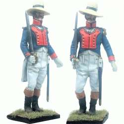 13 th Demi-brigade polish legion Saint-Domingue 1802 officer