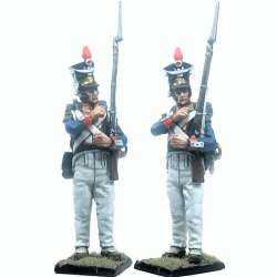 11th polish infantry regiment voltigeur
