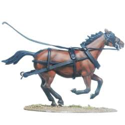 Draft horse 1
