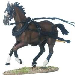 Draft horse 2