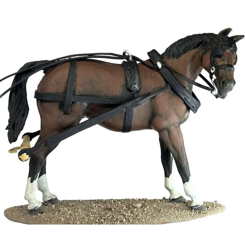 Stagecoach horse 2