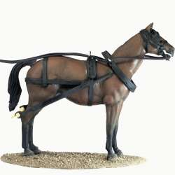 Stagecoach horse 1